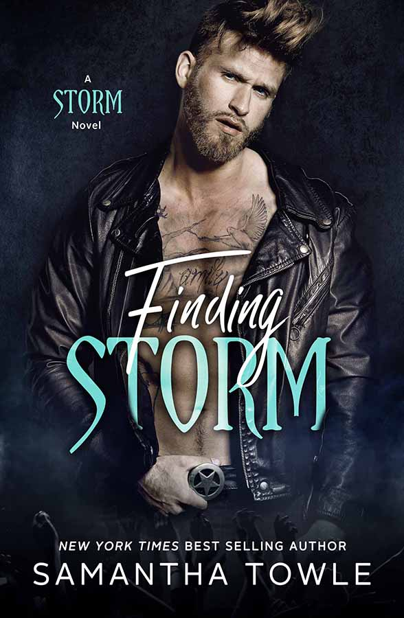 FindingStorm-samantha towle-aroun d books by vanessa